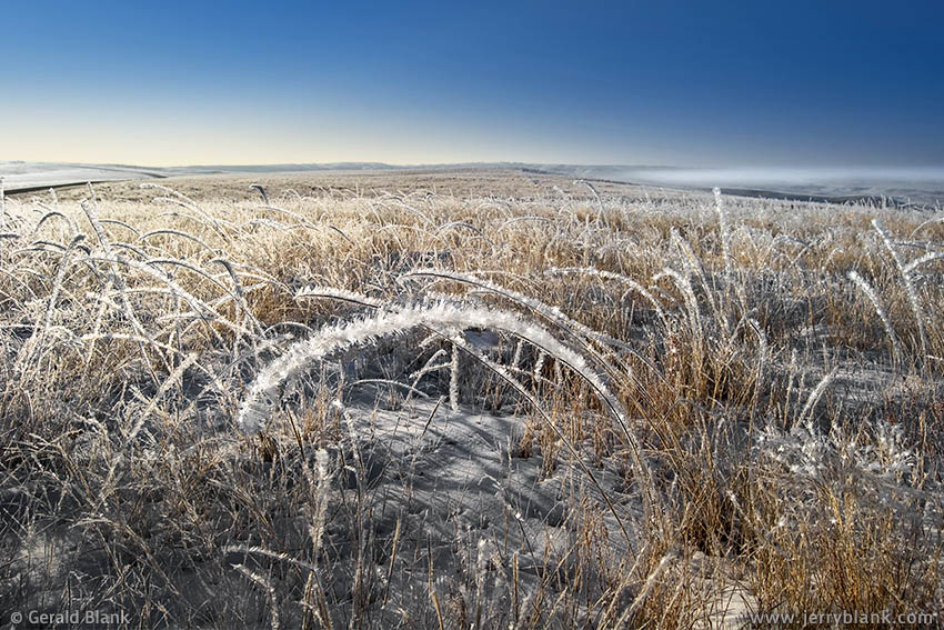#03249 - Early morning hoarfrost in the Little Missouri National Grassland, east of Tobacco Garden Bay in McKenzie County, North Dakota - photo by Jerry Blank